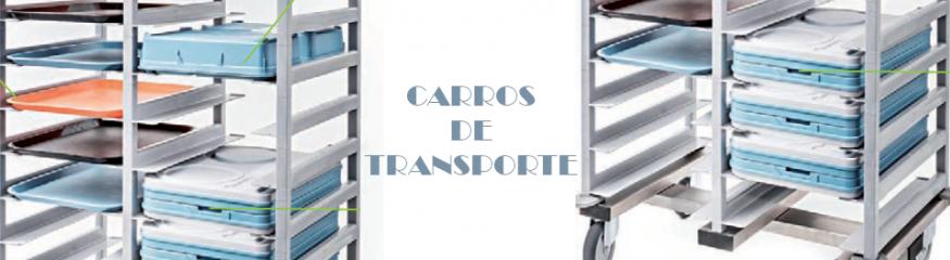 CARROS DE TRANSPORTE